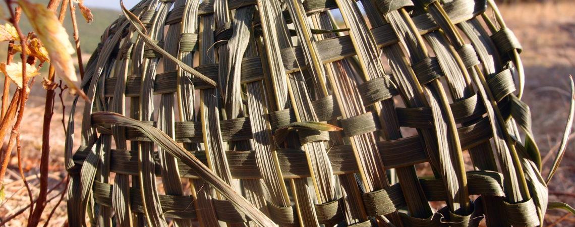 Feuille de palmier tressée en nappe