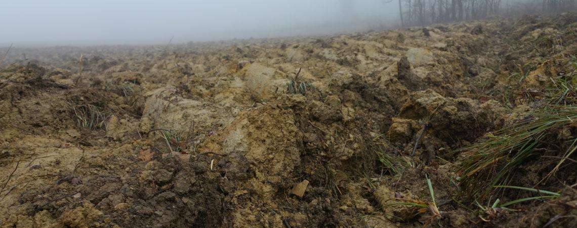 Champ de terre argileuse labouré
