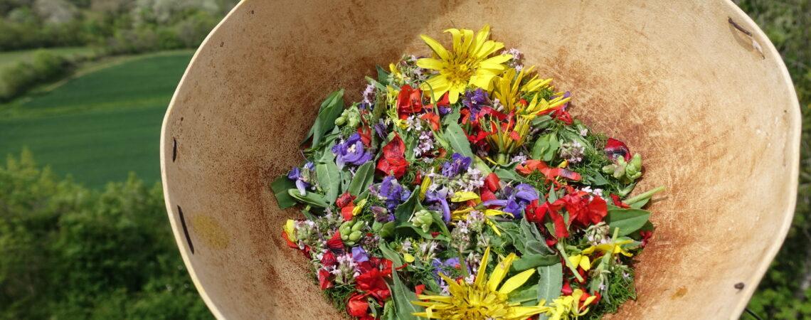 Mesclun de plantes et fleurs sauvages dans une calebasse